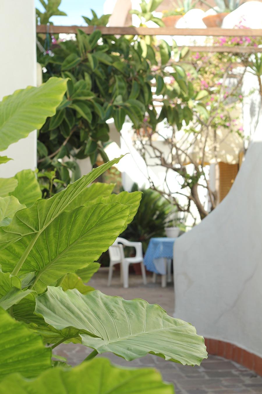 elianto_anzio_residence_appartamenti_ortensia_esterno_1