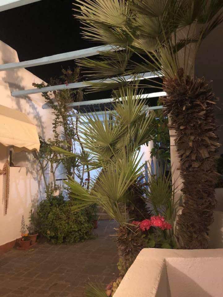 elianto_anzio_residence_appartamenti_ortensia_esterno_3