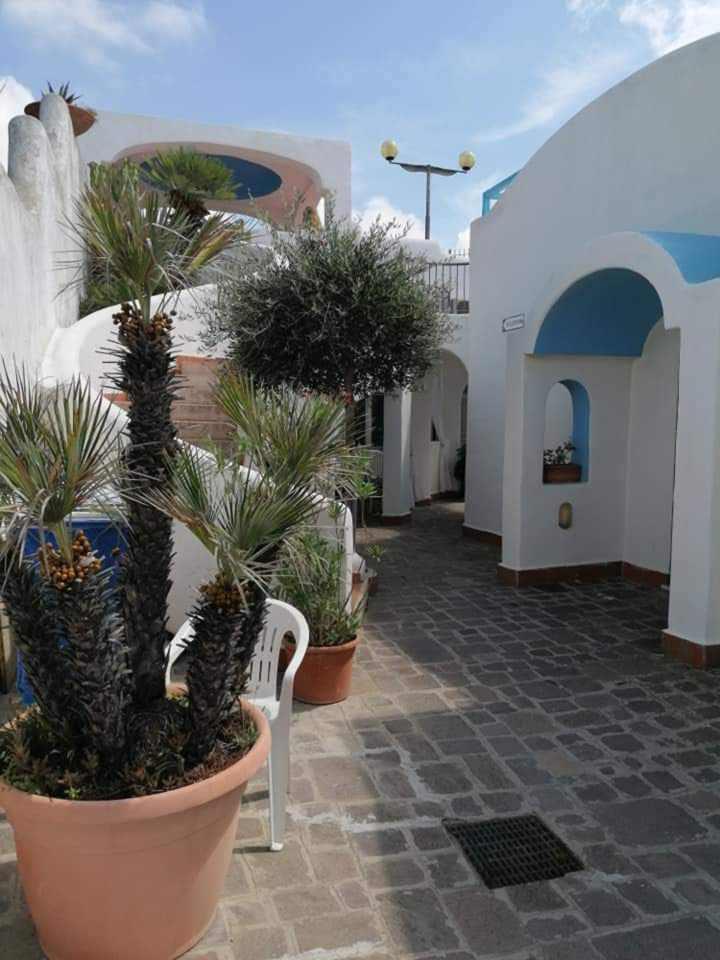 gardenia1-residence-elianto-appartamenti-anzio-piano terra