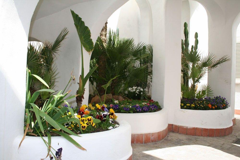 elianto_residence_anzio_hotel_appartamenti_vacance_mare_oleandro_esterno_6