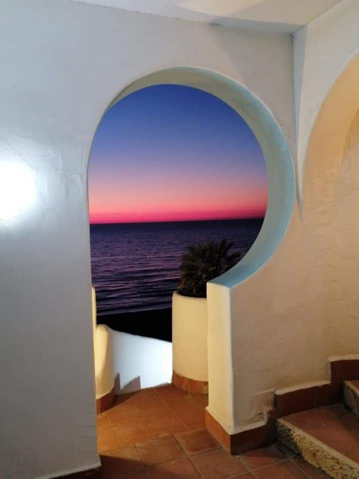 papavero_esterno_2_elianto_residence_anzio_fronte_mare