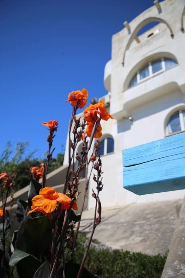 residence_elianto_anzio_fronte_mare_narciso_2